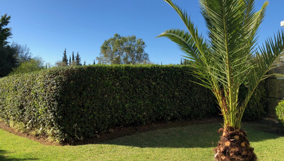 nagueles-south-facing-large-ground-floor-apartment-for-sale-img_5140