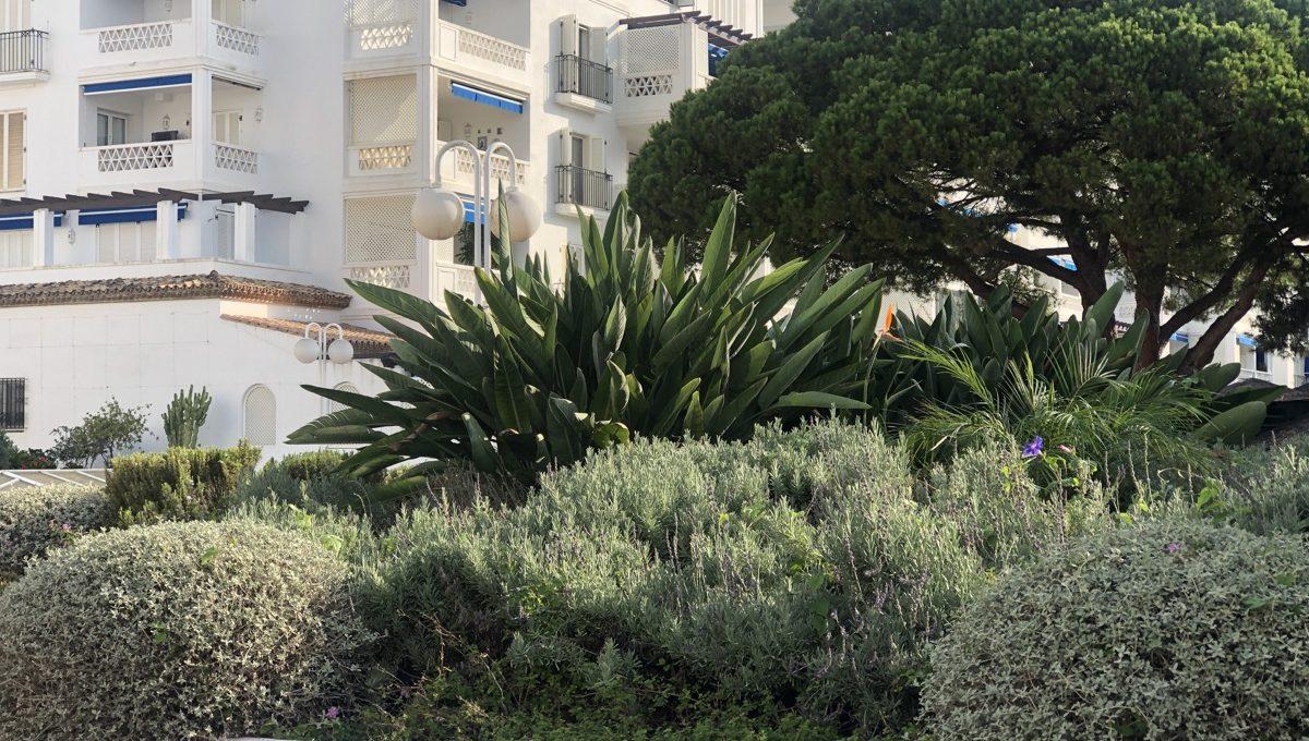 a-true-oasis-en-the-middle-of-puerto-banus-img_8885