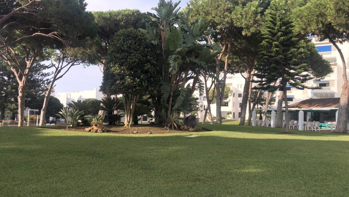 a-true-oasis-en-the-middle-of-puerto-banus-img_8892