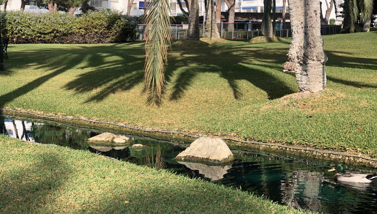 a-true-oasis-en-the-middle-of-puerto-banus-img_8901