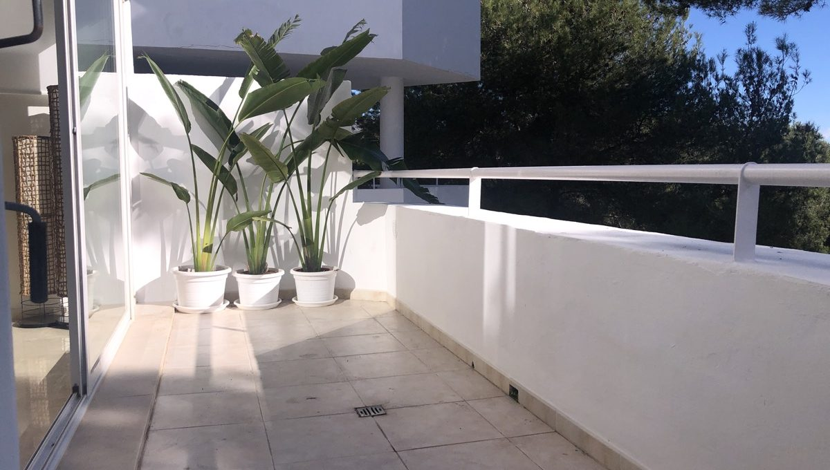 refurbished-duplex-penthouse-with-private-pool-img_1035